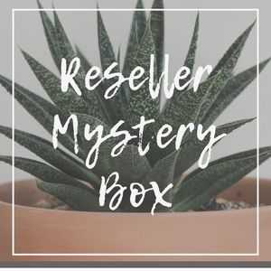 High End 6 Item Mystery Box for Resellers
